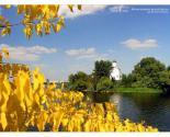 images/2011/06-09-19-20-1.jpg