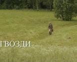 images/2013/Belorusskie_kartini_stali_prizerami_kinofestivalya6755680.jpg