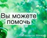 images/2017/Dobrovolcheskoe_dvigenie_hrama_ikoni_Bogiey_MateriVsetsaritsa.jpg