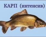 images/2017/Obyavlyaetsya_zapis_na_Kurs_Aktivnogo_Razvitiya_Pamyati4957781.jpg
