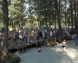 images/2018/Na_Goluboy_krinitse_v_prazdnik_Medovogo.jpg