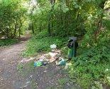 images/2020/Giteley_Kamennoy_Gorki_priglashayut_na_uborku_ekologicheskoy9518849.jpg