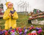 images/2021/Obraz_trudnika_kto_sozdaet_krasotu_na/